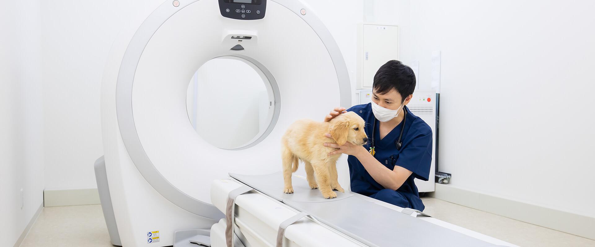 愛知動物外科病院